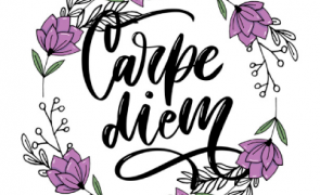 CarpieDien