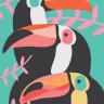 3 tucanos